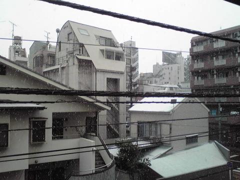 SnowTokyo20080123