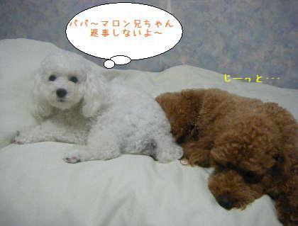 2008_09250111.jpg