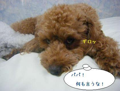 2008_09250117.jpg
