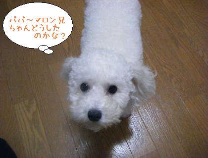 2008_09250136.jpg