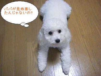 2008_09250144.jpg