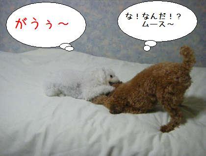 2008_09250153.jpg