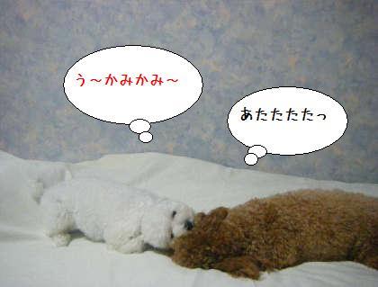 2008_09250159.jpg