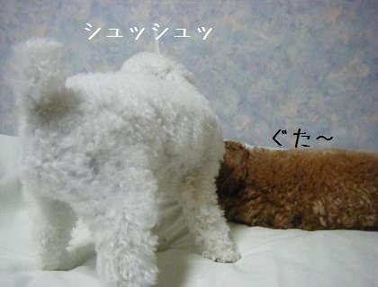 2008_09250168.jpg