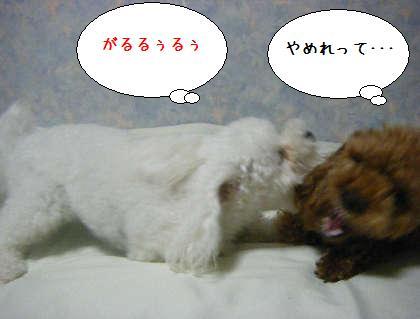 2008_09250171.jpg
