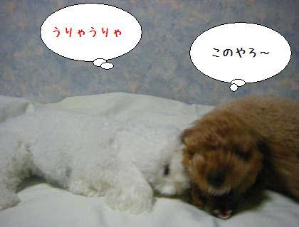 2008_09250172.jpg