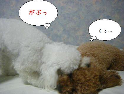 2008_09250173.jpg
