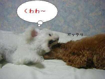 2008_09250176.jpg