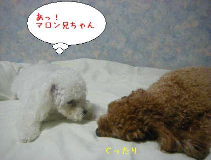 2008_09250189.jpg