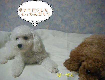 2008_09250192.jpg