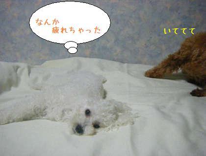 2008_09250199.jpg