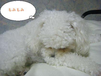 2008_09250210.jpg