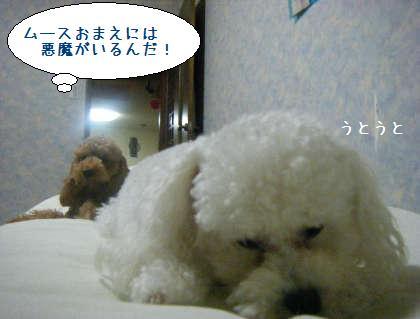2008_09250223.jpg