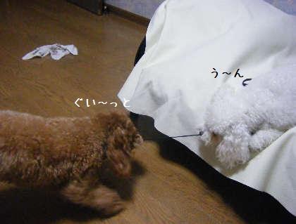 2008_09250241.jpg