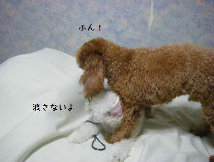 2008_09250246.jpg