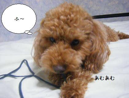 2008_09250268.jpg