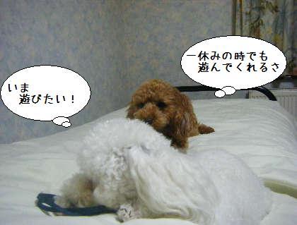 2008_09250283.jpg
