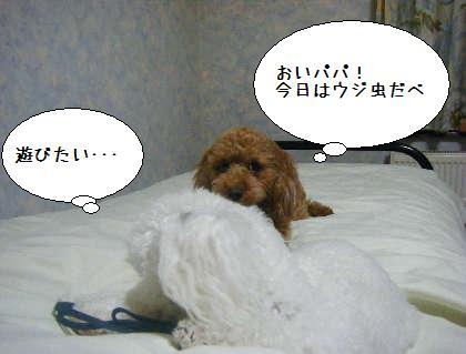 2008_09250284.jpg