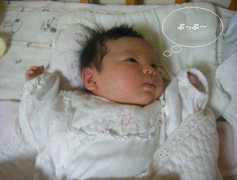 2008_12030032.jpg