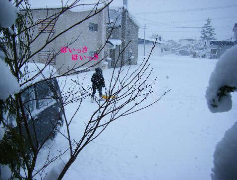 2008_12070041.jpg