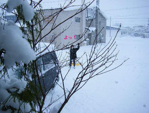 2008_12070042.jpg