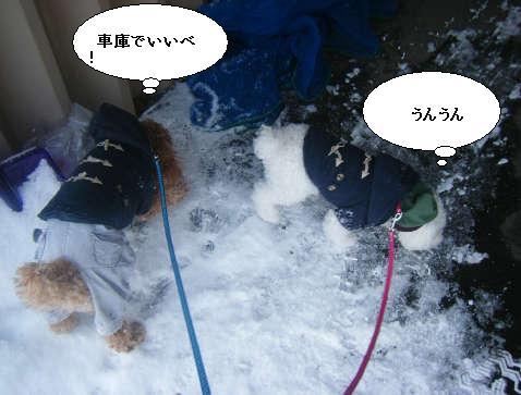 2008_12130023.jpg