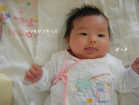 2008_12180010.jpg