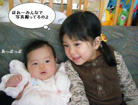 2008_12300019.jpg