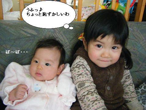 2008_12300021.jpg