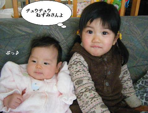 2008_12300023.jpg