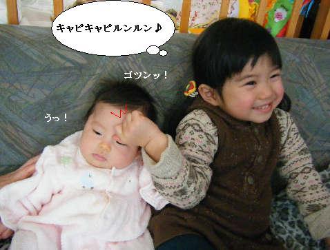 2008_12300039.jpg