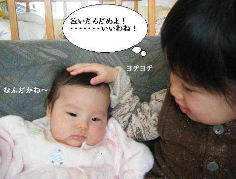 2008_12300047.jpg