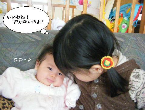 2008_12300049.jpg