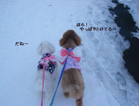 2009_01010117.jpg