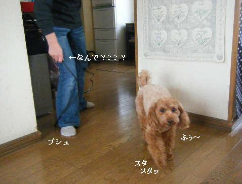 2009_01050014.jpg