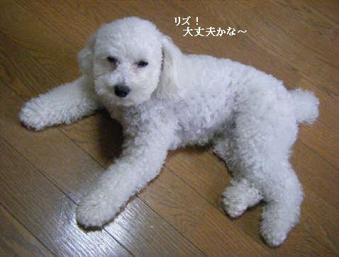 2009_01050040.jpg
