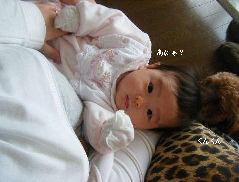 2009_01140019.jpg