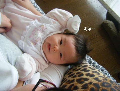 2009_01140024.jpg