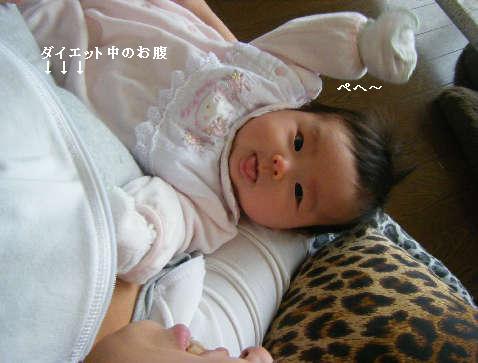 2009_01140032.jpg