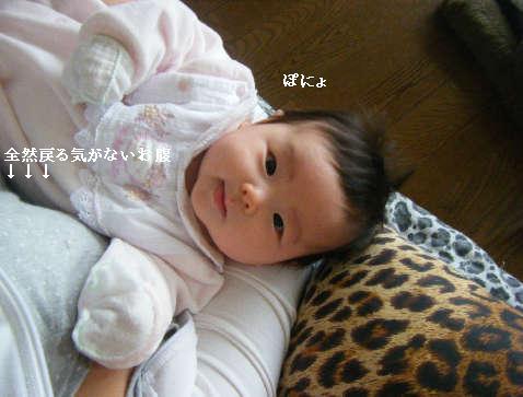 2009_01140039.jpg