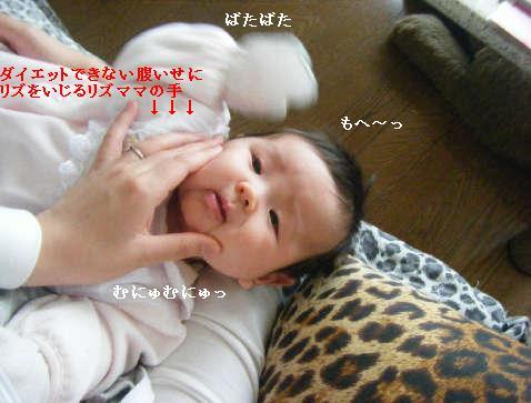 2009_01140047.jpg