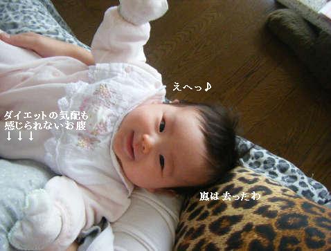 2009_01140049.jpg