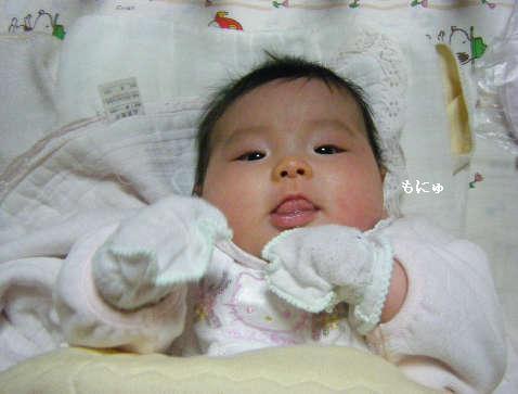 2009_01140072.jpg