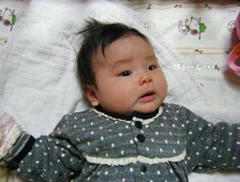 2009_01250387.jpg