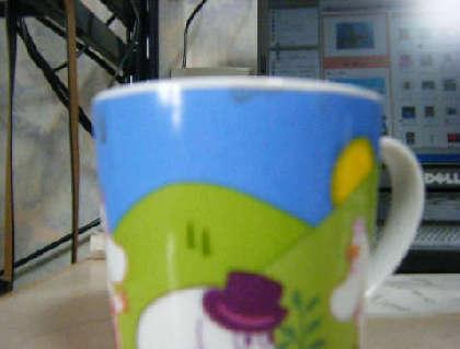 2009_02220032.jpg