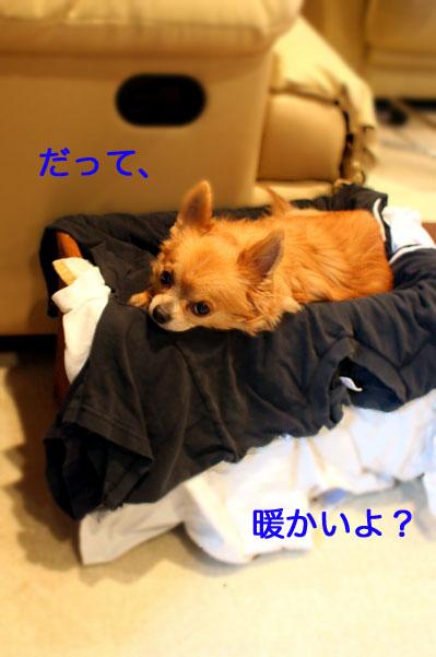 sentakumonomaro.jpg