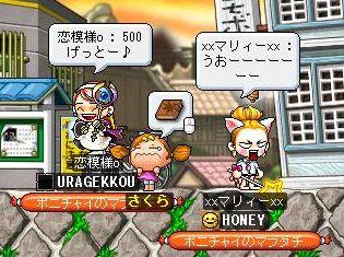 恋模様c500!