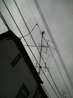 01128.jpg