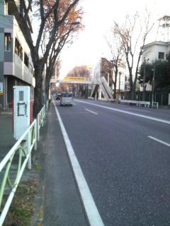 2011123001.jpg