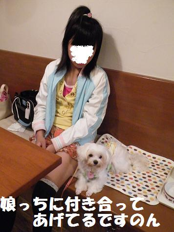 2008_10090006.jpg